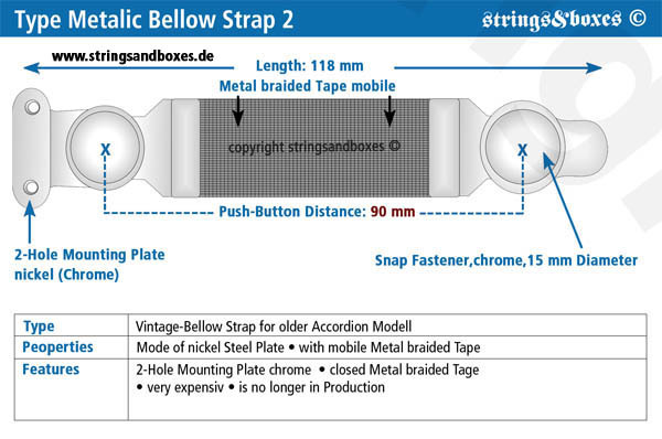 Metallic_Bellow_Strap_02.jpg